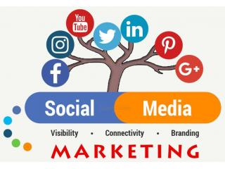 FLASH SPECIAL - 50% Off / Outshine Your Social Media Competitors!